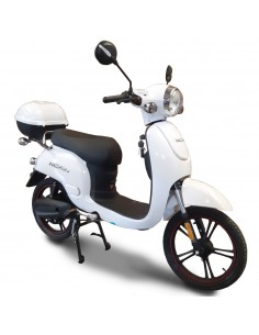 copy of SCOOTER NCX NCX LUX-a R18 600W 48V 12Ah